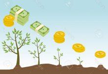 ambiente como variable economica