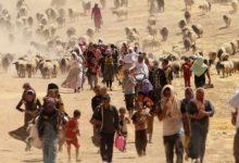 refugiadosambientales